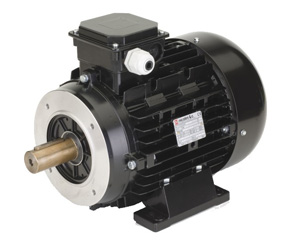John 39 s electric motor service expert electric motor for Biedler s electric motor repair
